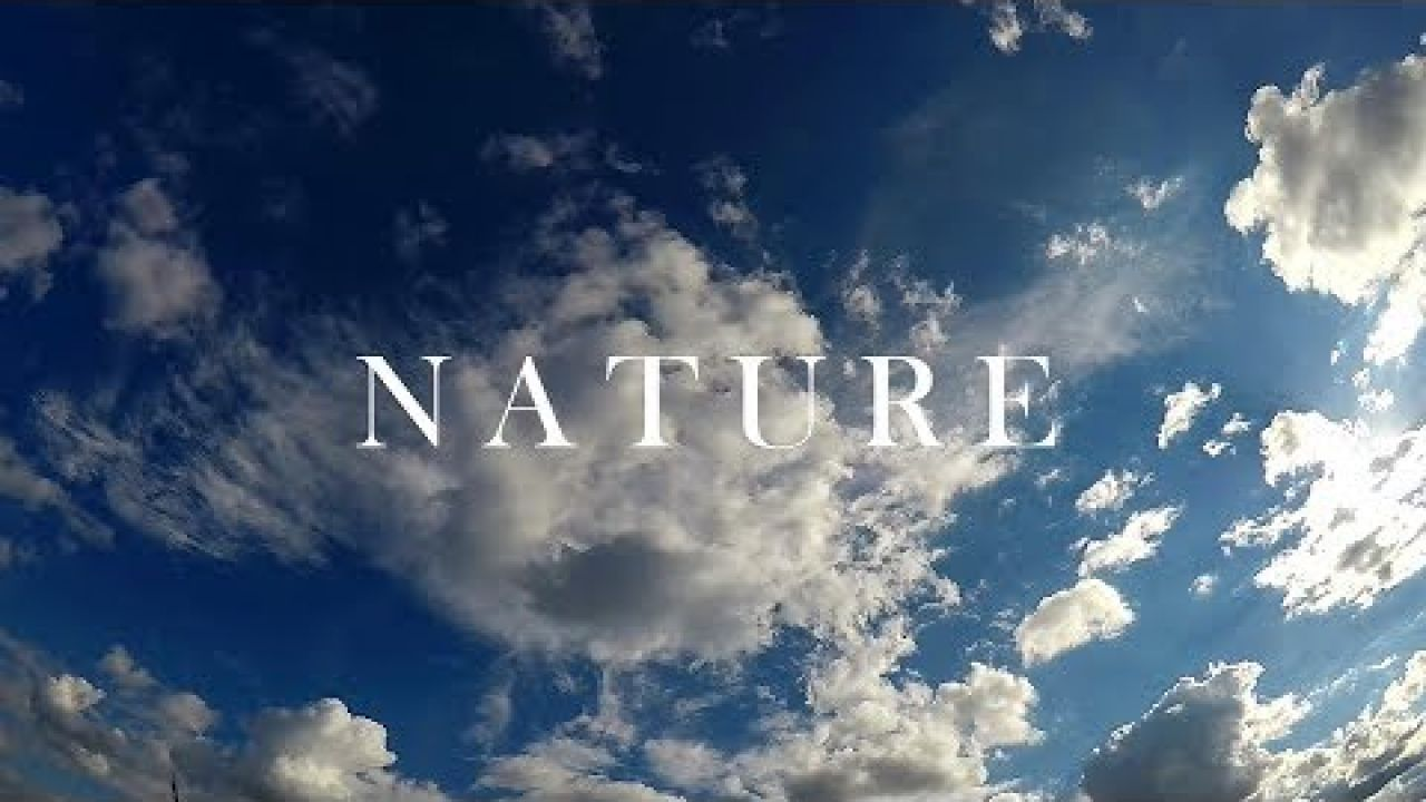 Adam Bielak - Nature