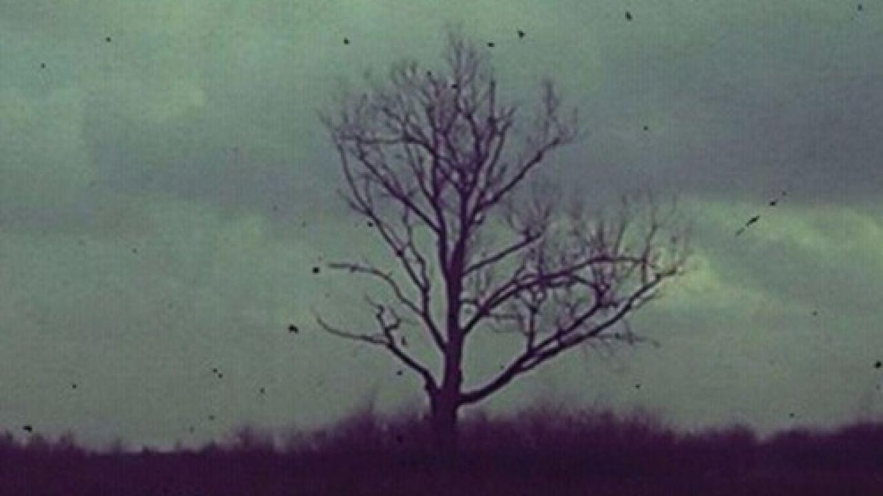Kingdom Of Silence by Pinn Dropp - official Soudcloud